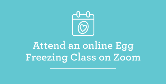 Attend an online Egg Freezing Class on Zoom